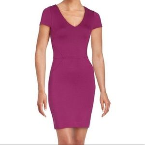 NWT French Connection Magenta Dress